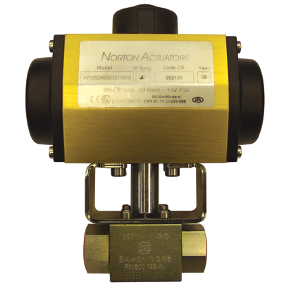 steam rated spring check valve